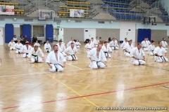 trening-shihan-062018-97