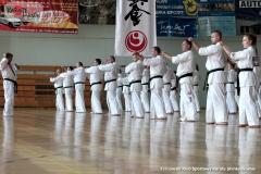 Trening-Shihan-Gwizd-2019-21